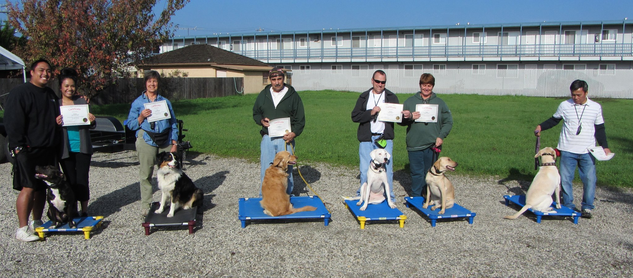 Orinda, Lafayette, concord, walnut creek, Alamo dog training